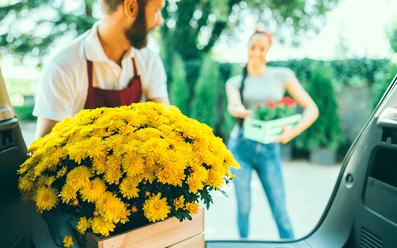 Carro por Assinatura: Um homem e uma mulher trabalhando em uma floricultura